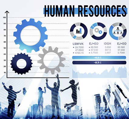 Crunching The Numbers Why Hr Metrics Matter In Performance